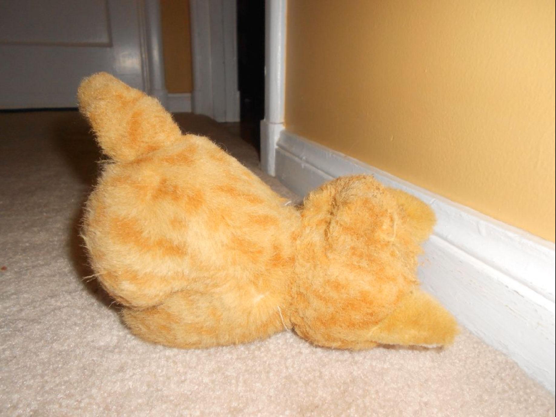Stuffed-Fritz